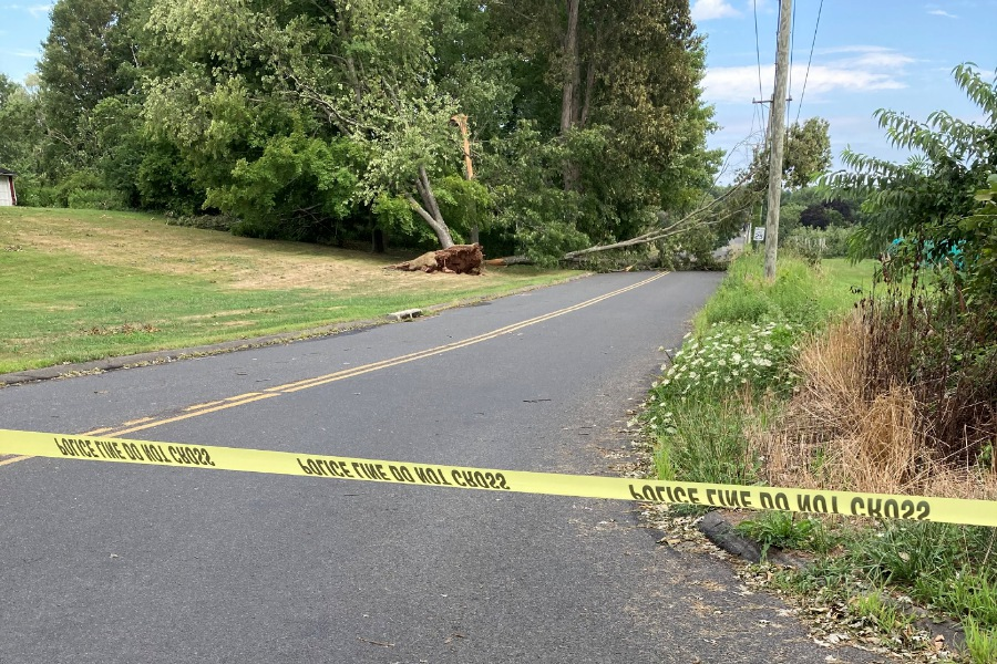 Ellen Jarus Hanley/Cheshire Herald - Wiese Road was closed off after a large limb came down.