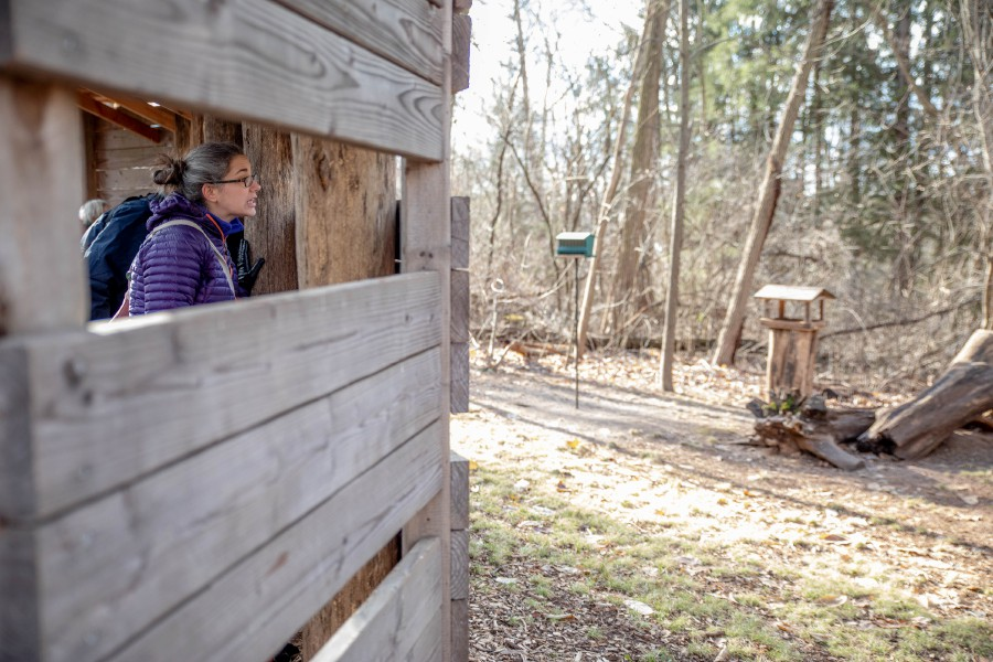 Devin Leith-Yessian/Record-Journal – Erica Byrne, of Southington, looks through a bird blind at the Riverbound Farm Sanctuary in Cheshire. The Quinnipiac Valley Audubon Society and Cheshire Land Trust led a hike around the property for the First Day Hike on Jan. 1.