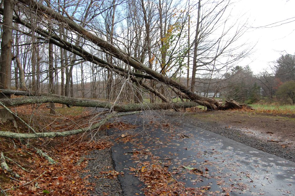 File photo – In the aftermath of Hurricane Sandy in 2012, several roads were blocked by downed trees.