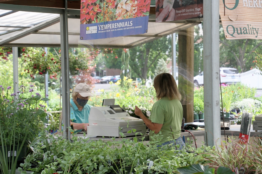 Tracey Harrington/Cheshire HeraldSome customers peruse different options at Cheshire Nursery.