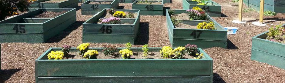 Outdoor garden beds created by TerraCycle of recycled material. 2019